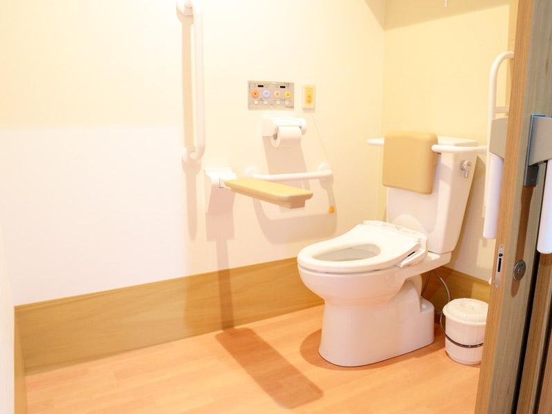 肘置き、背もたれ付きトイレ